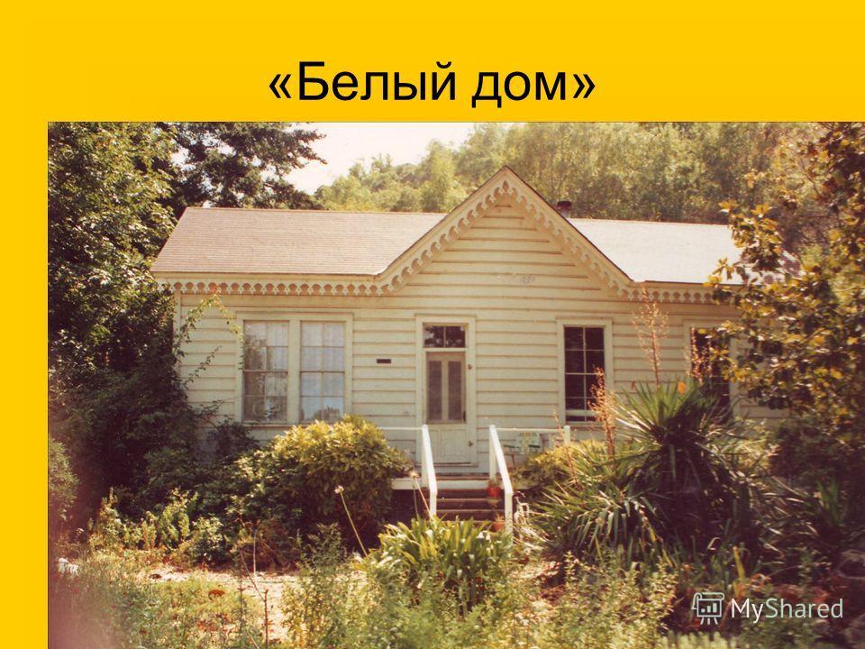 «Белый дом»