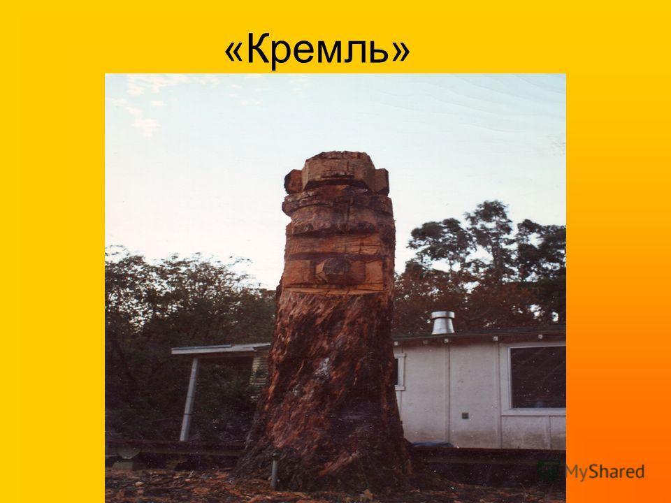 «Кремль»