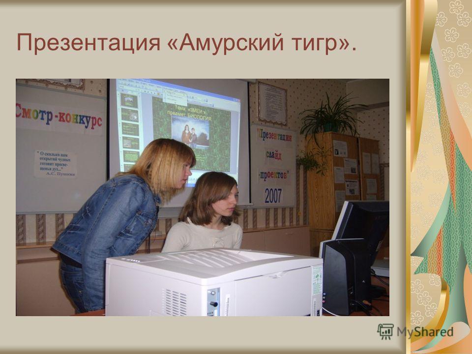 Презентация «Амурский тигр».