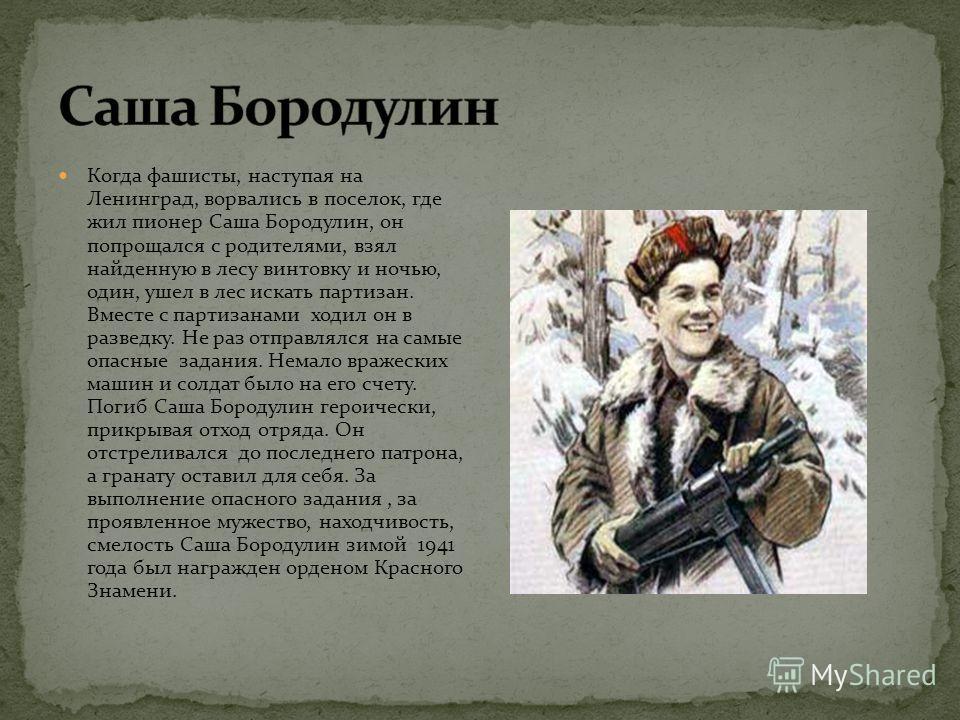 Когда фашисты, наступая на Ленинград, ворвались в поселок, где жил пионер Саша Бородулин, он попрощался с родителями, взял найденную в лесу винтовку и ночью, один, ушел в лес искать партизан. Вместе с партизанами ходил он в разведку. Не раз отправлял