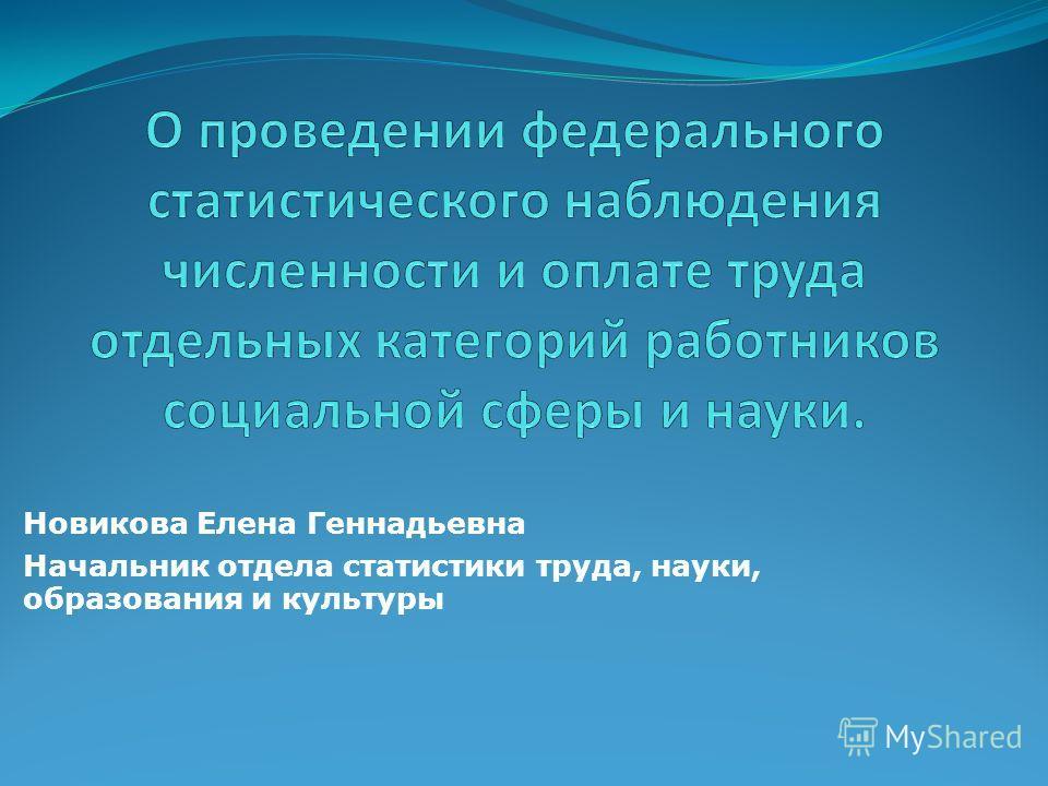 Новикова Елена Геннадьевна Начальник отдела статистики труда, науки, образования и культуры
