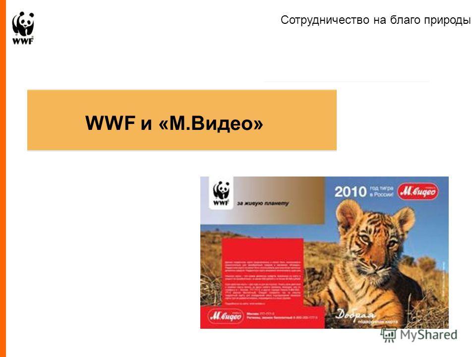 Presentation to Company Name WWF и «M.Видео» Сотрудничество на благо природы