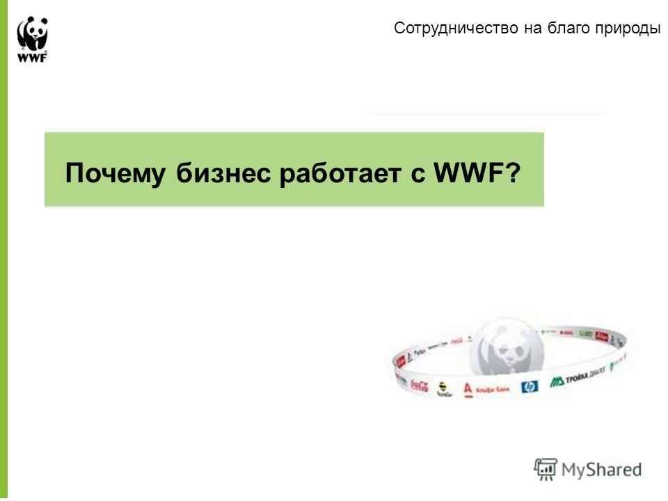 Сотрудничество на благо природы Presentation to Company Name Почему бизнес работает с WWF?