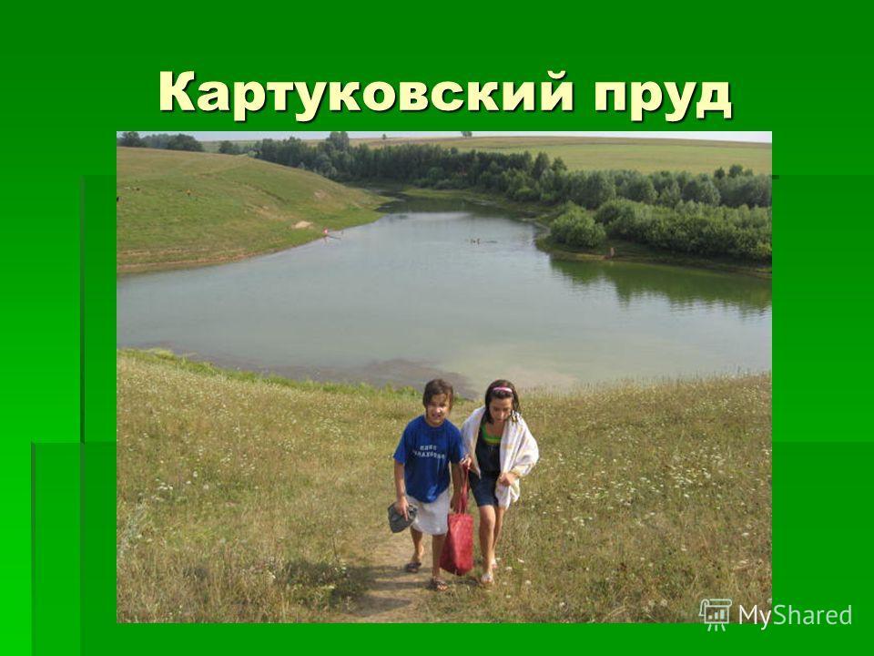 Картуковский пруд