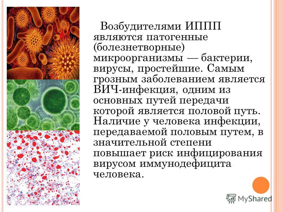 Возбудителями ИППП являются патогенные (болезнетворные) микроорганизмы бактерии, вирусы, простейшие. Самым грозным заболеванием является ВИЧ-инфекция, одним из основных путей передачи которой является половой путь. Наличие у человека инфекции, переда