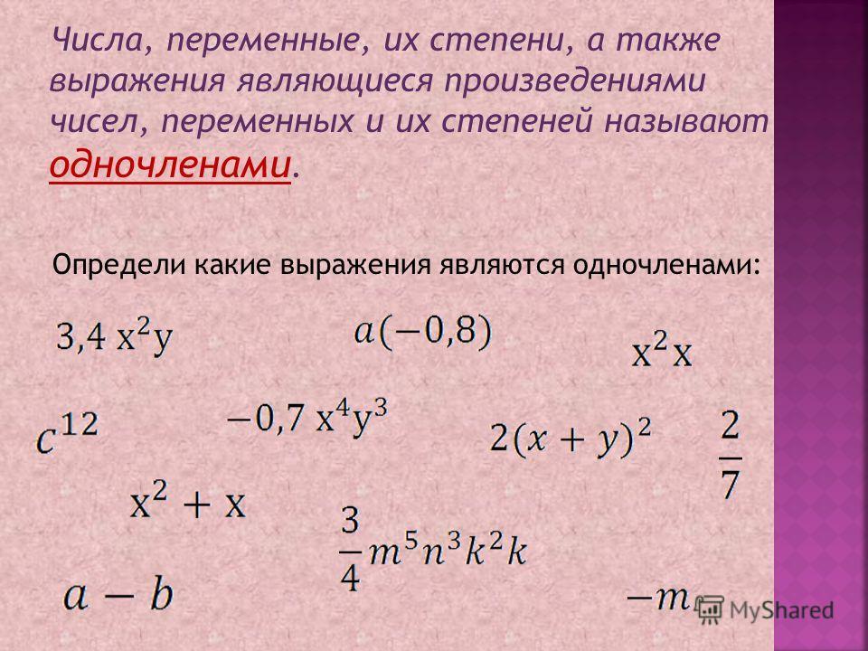 Числа, переменные, их степени, а также выражения являющиеся произведениями чисел, переменных и их степеней называют одночленами. Определи какие выражения являются одночленами: