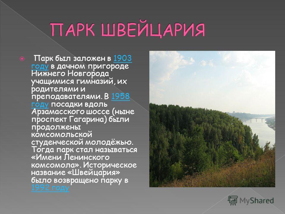Парк был заложен в 1903 году в дачном пригороде Нижнего Новгорода учащимися гимназий, их родителями и преподавателями. В 1958 году посадки вдоль Арзамасского шоссе (ныне проспект Гагарина) были продолжены комсомольской студенческой молодёжью. Тогда п