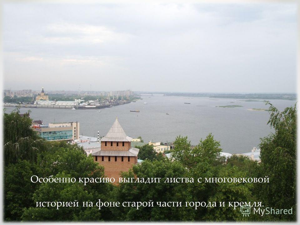 Особенно красиво выгладит листва с многовековой историей на фоне старой части города и кремля.