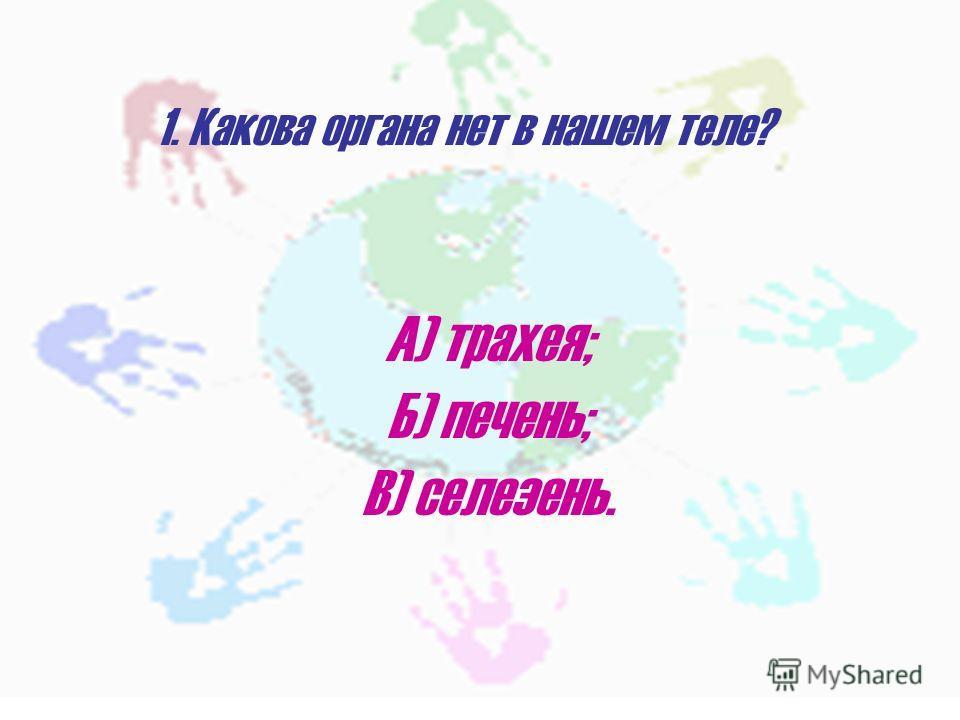 1. Какова органа нет в нашем теле? А) трахея; Б) печень; В) селезень.
