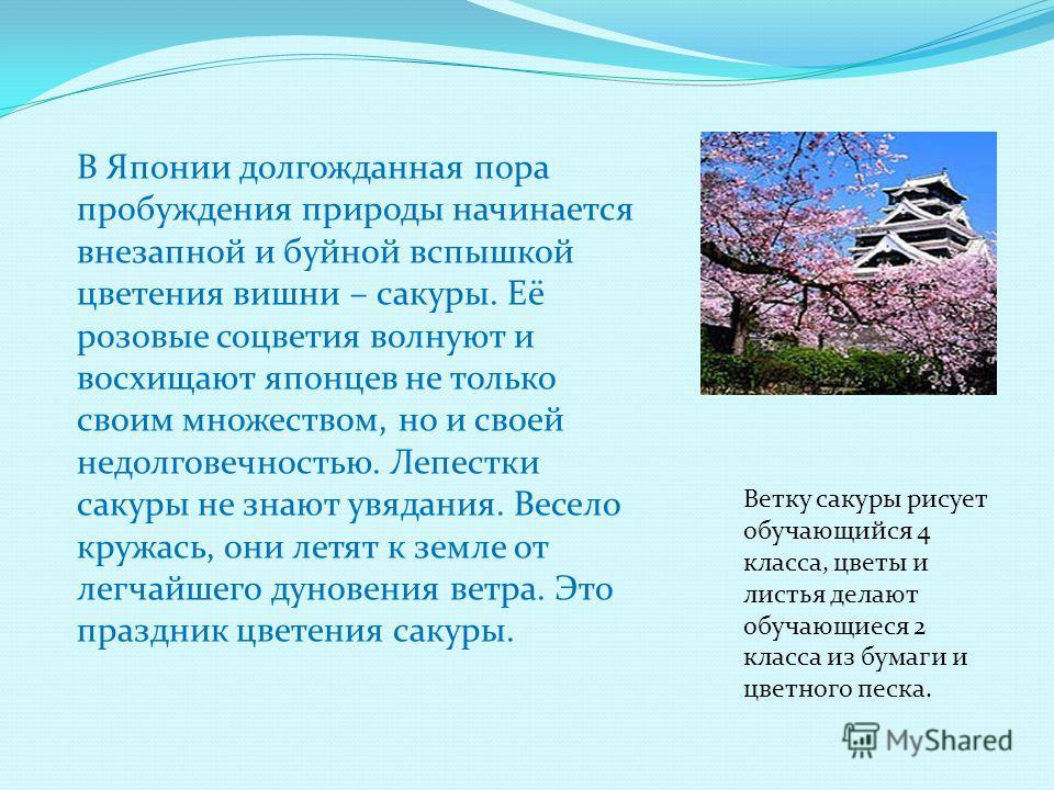 В Японии долгожданная пора пробуждения природы начинается внезапной и буйной вспышкой цветения вишни – сакуры. Её розовые соцветия волнуют и восхищают японцев не только своим множеством, но и своей недолговечностью. Лепестки сакуры не знают увядания.