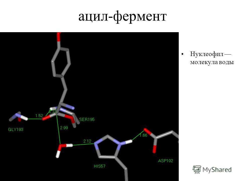 ацил-фермент Нуклеофил молекула воды