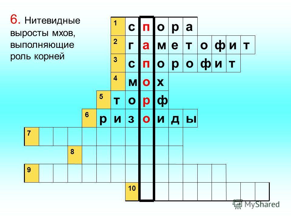 9 8 7 ыдиозир 6 фрот 5 хом 4 тифоропс 3 тифотемаг 2 аропс 1 6. Нитевидные выросты мхов, выполняющие роль корней