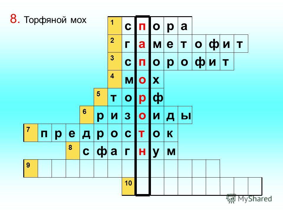 9 мунгафс 8 котсордерп 7 ыдиозир 6 фрот 5 хом 4 тифоропс 3 тифотемаг 2 аропс 1 8. Торфяной мох