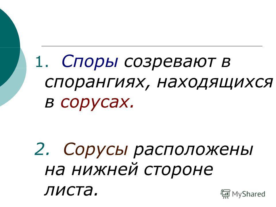 1. Споры созревают в спорангиях, находящихся в сорусах. 2. Сорусы расположены на нижней стороне листа.