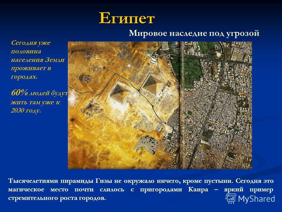 Египет Мировое наследие под угрозой Тысячелетиями пирамиды Гизы не окружало ничего, кроме пустыни. Сегодня это магическое место почти слилось с пригородами Каира – яркий пример стремительного роста городов. Сегодня уже половина населения Земли прожив