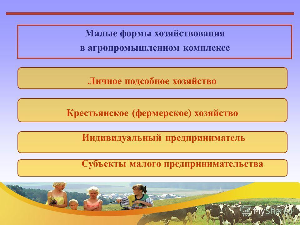 Малые формы хозяйствования в агропромышленном комплексе Личное подсобное хозяйство Крестьянское (фермерское) хозяйство Индивидуальный предприниматель Субъекты малого предпринимательства