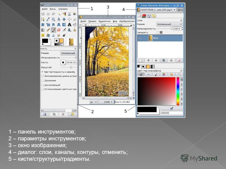 1 – панель инструментов; 2 – параметры инструментов; 3 – окно изображения; 4 – диалог: слои, каналы, контуры, отменить; 5 – кисти/структуры/градиенты.