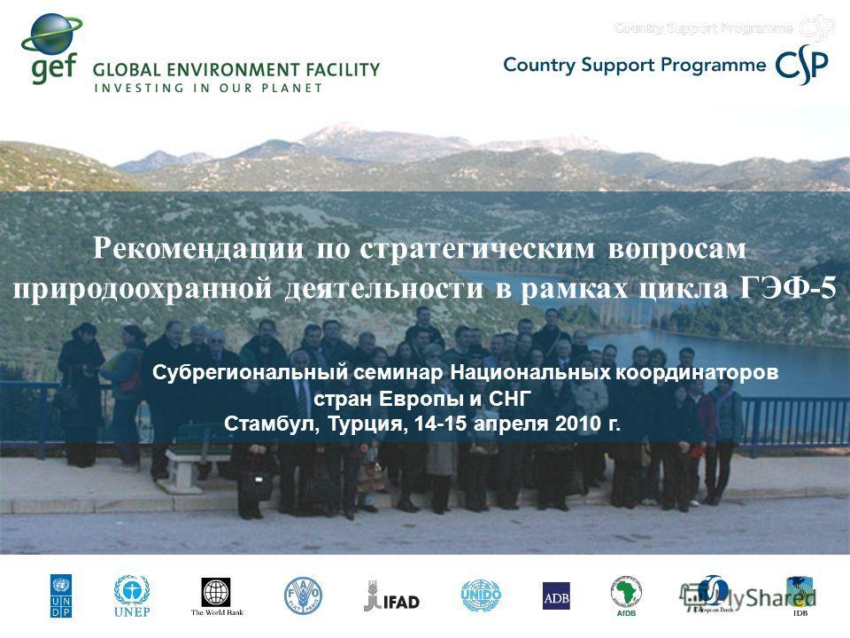 Рекомендации по стратегическим вопросам природоохранной деятельности в рамках цикла ГЭФ-5 Субрегиональный семинар Национальных координаторов стран Европы и СНГ Стамбул, Турция, 14-15 апреля 2010 г.