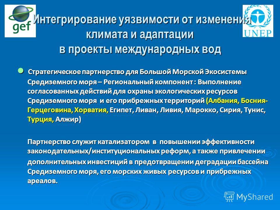 Стратегическое партнерство для Большой Морской Экосистемы Средиземного моря – Региональный компонент : Выполнение согласованных действий для охраны экологических ресурсов Средиземного моря и его прибрежных территорий (Албания, Босния- Герцеговина, Хо