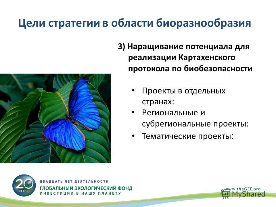 3) Наращивание потенциала для реализации Картахенского протокола по биобезопасности Проекты в отдельных странах: Региональные и субрегиональные проекты: Тематические проекты : Цели стратегии в области биоразнообразия