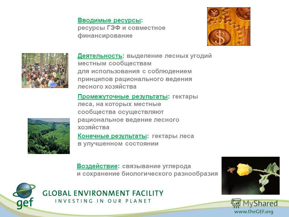 Вводимые ресурсы: ресурсы ГЭФ и совместное финансирование Деятельность: выделение лесных угодий местным сообществам для использования с соблюдением принципов рационального ведения лесного хозяйства Промежуточные результаты: гектары леса, на которых м