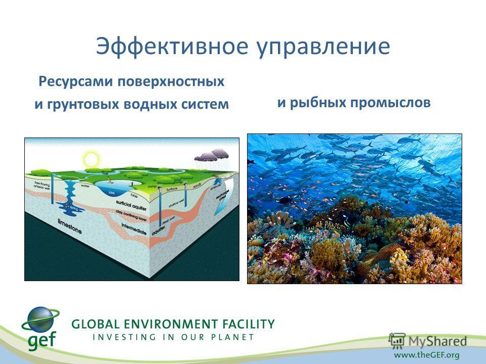Эффективное управление Ресурсами поверхностных и грунтовых водных систем и рыбных промыслов