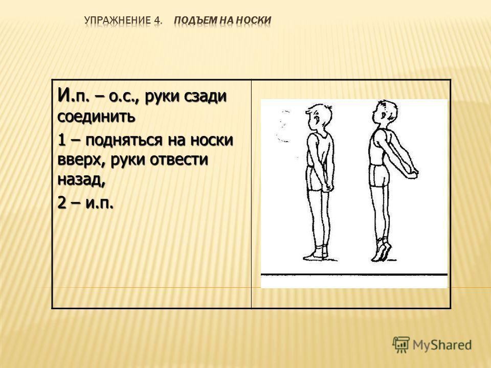 И. п. – о.с., руки сзади соединить 1 – подняться на носки вверх, руки отвести назад, 2 – и.п.