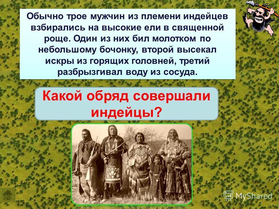 Обычно трое мужчин из племени индейцев взбирались на высокие ели в священной роще. Один из них бил молотком по небольшому бочонку, второй высекал искры из горящих головней, третий разбрызгивал воду из сосуда. Какой обряд совершали индейцы?