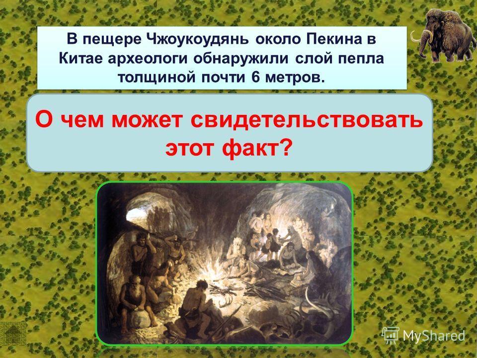 В пещере Чжоукоудянь около Пекина в Китае археологи обнаружили слой пепла толщиной почти 6 метров. О чем может свидетельствовать этот факт?