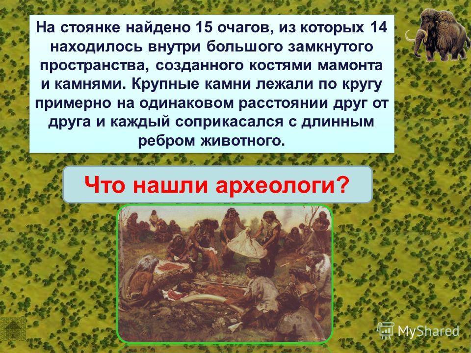 На стоянке найдено 15 очагов, из которых 14 находилось внутри большого замкнутого пространства, созданного костями мамонта и камнями. Крупные камни лежали по кругу примерно на одинаковом расстоянии друг от друга и каждый соприкасался с длинным ребром