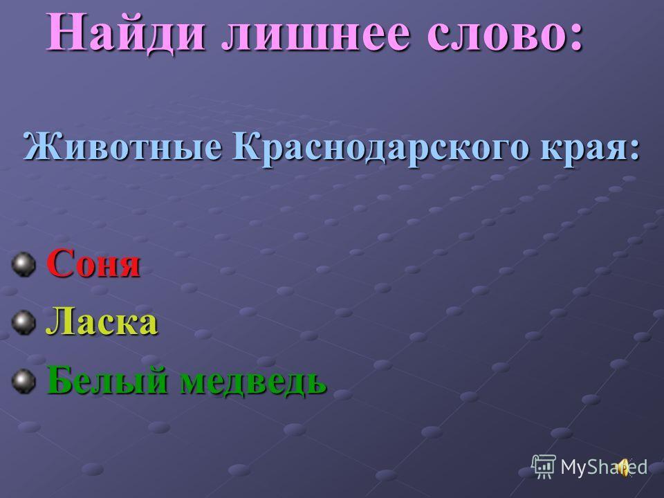 Птицы Краснодарского края: Кукушка Полярная сова Чайка