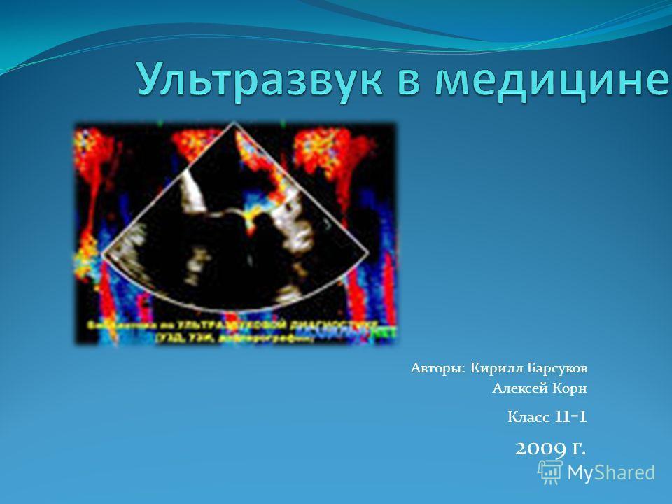 Авторы: Кирилл Барсуков Алексей Корн Класс 11-1 2009 г.