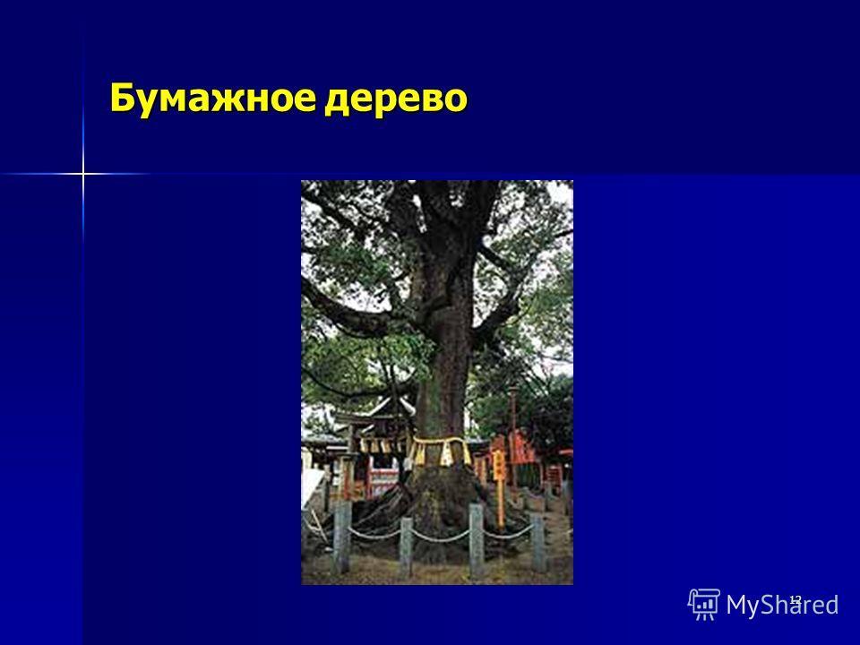 12 Бумажное дерево
