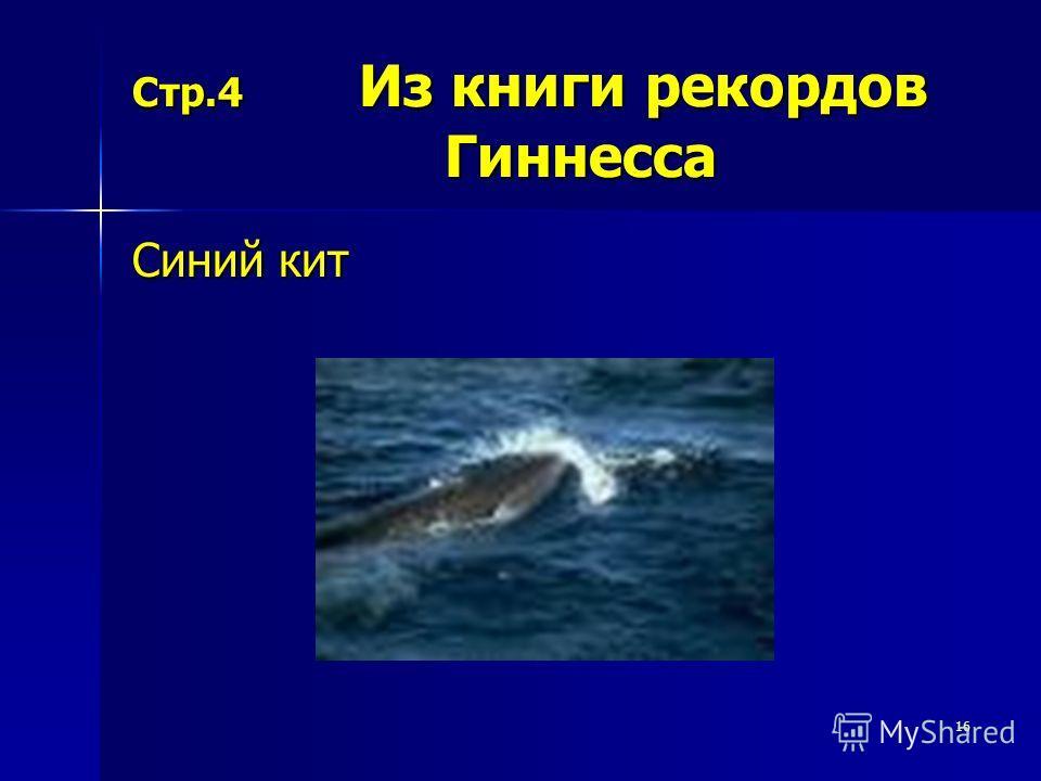 16 Стр.4 Из книги рекордов Гиннесса Синий кит