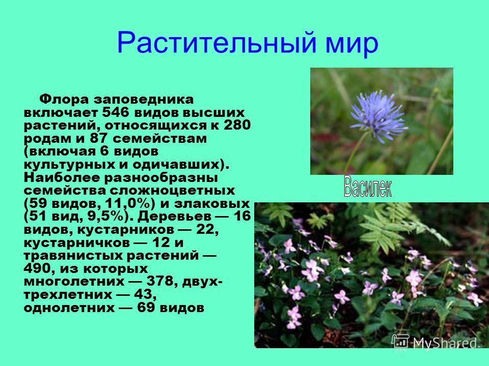 Растительный мир Флора заповедника включает 546 видов высших растений, относящихся к 280 родам и 87 семействам (включая 6 видов культурных и одичавших). Наиболее разнообразны семейства сложноцветных (59 видов, 11,0%) и злаковых (51 вид, 9,5%). Деревь