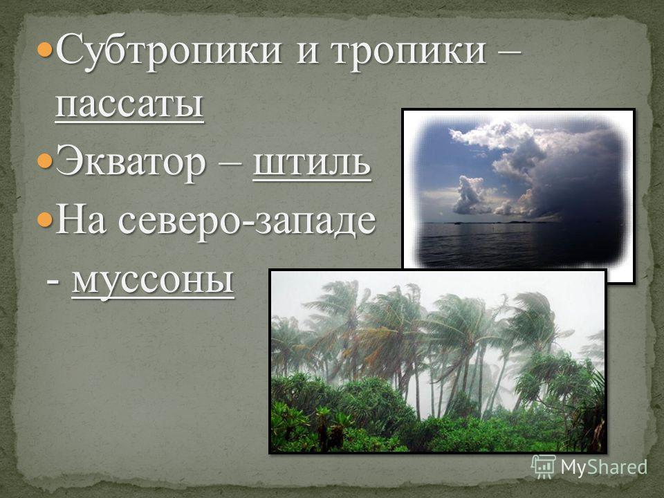Субтропики и тропики – пассаты Субтропики и тропики – пассаты Экватор – штиль Экватор – штиль На северо-западе На северо-западе - муссоны - муссоны