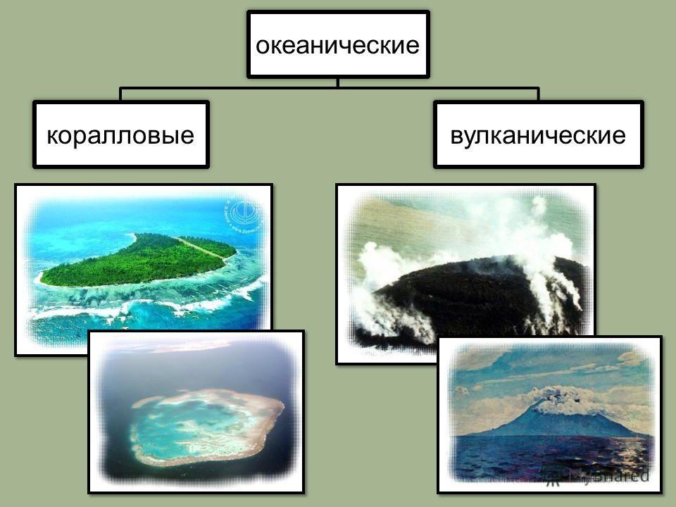 океанические коралловыевулканические