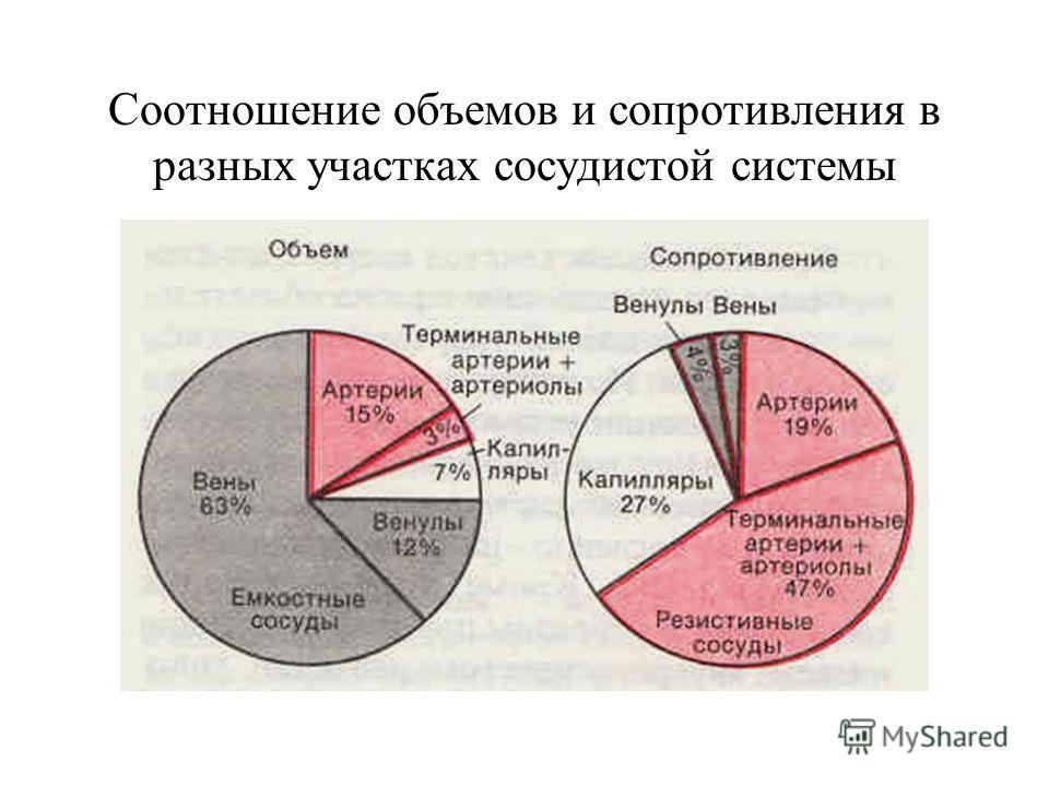 Соотношение объемов и сопротивления в разных участках сосудистой системы