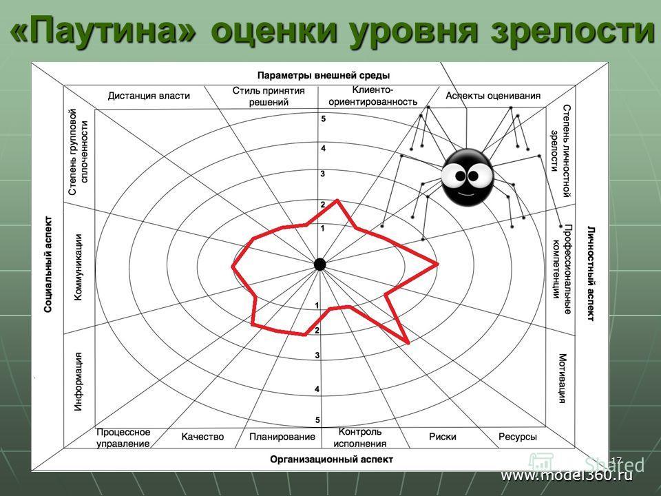 17 «Паутина» оценки уровня зрелости www.model360.ru