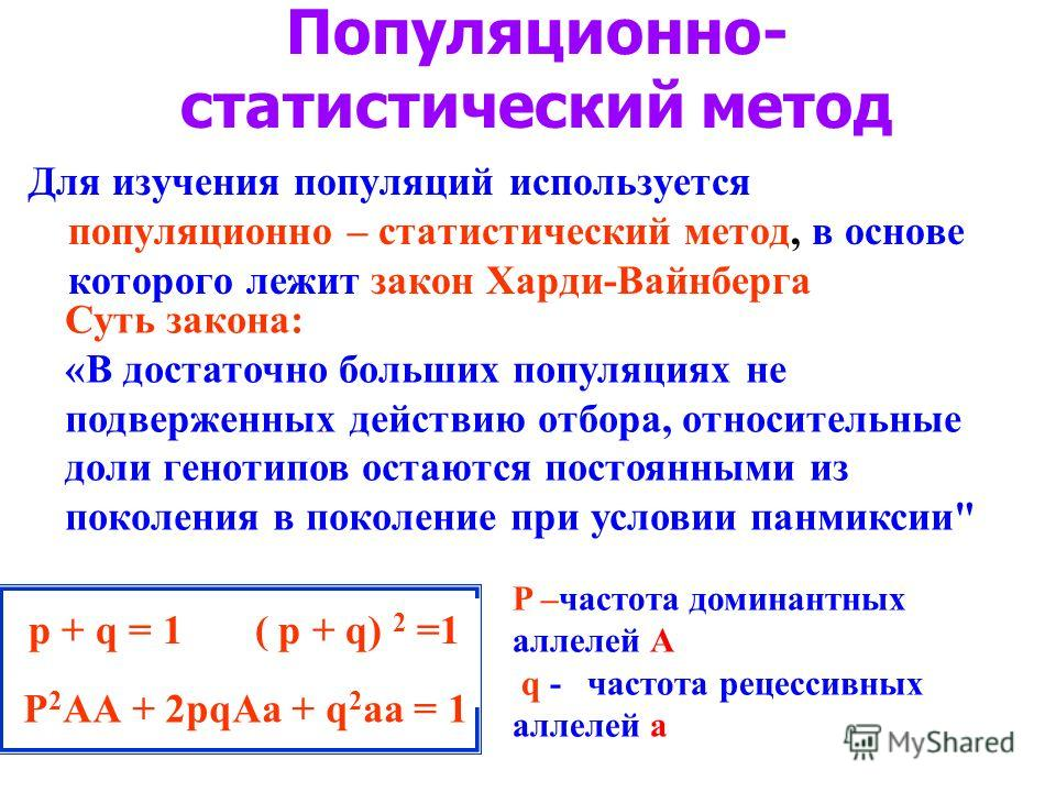 Популяционно- статистический метод Для изучения популяций используется популяционно – статистический метод, в основе которого лежит закон Харди-Вайнберга Суть закона: «В достаточно больших популяциях не подверженных действию отбора, относительные дол