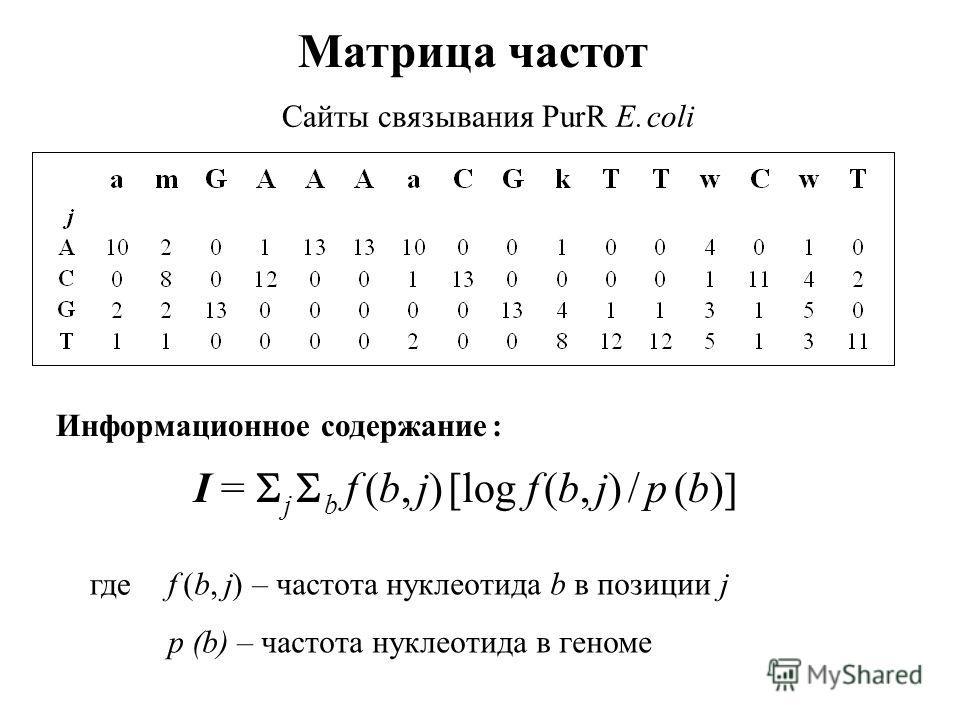 Матрица частот Сайты связывания PurR E. coli Информационное содержание : I = j b f (b, j) [log f (b, j) / p (b)] f (b, j) – частота нуклеотида b в позиции j p (b) – частота нуклеотида в геноме где