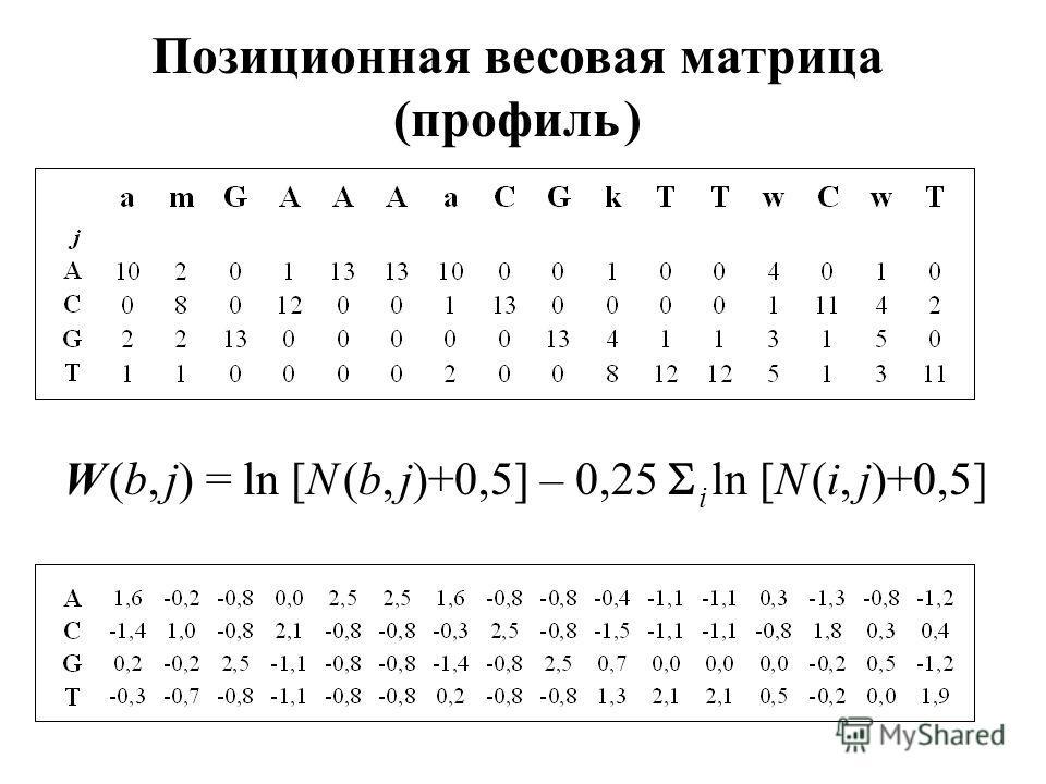 Позиционная весовая матрица (профиль ) W (b, j) = ln [N (b, j)+0,5] – 0,25 i ln [N (i, j)+0,5]