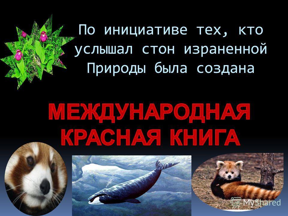 По инициативе тех, кто услышал стон израненной Природы была создана