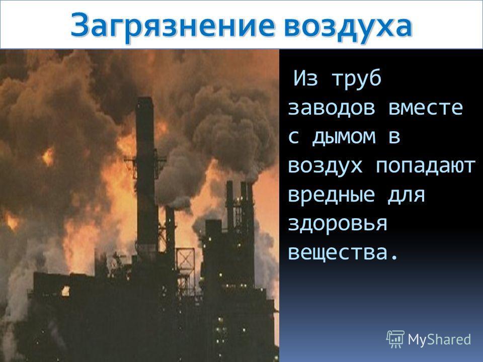 Из труб заводов вместе с дымом в воздух попадают вредные для здоровья вещества.