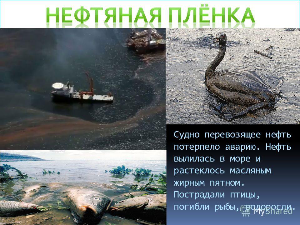 Судно перевозящее нефть потерпело аварию. Нефть вылилась в море и растеклось масляным жирным пятном. Пострадали птицы, погибли рыбы, водоросли.