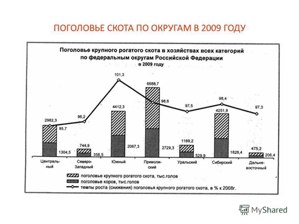 ПОГОЛОВЬЕ СКОТА ПО ОКРУГАМ В 2009 ГОДУ