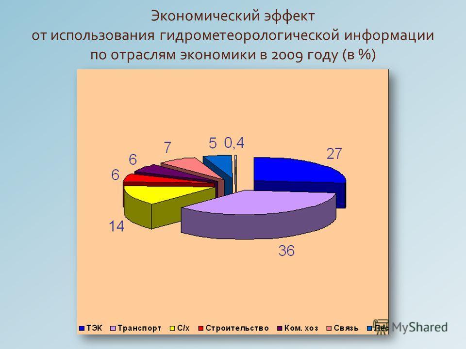Экономический эффект от использования гидрометеорологической информации по отраслям экономики в 2009 году ( в %)