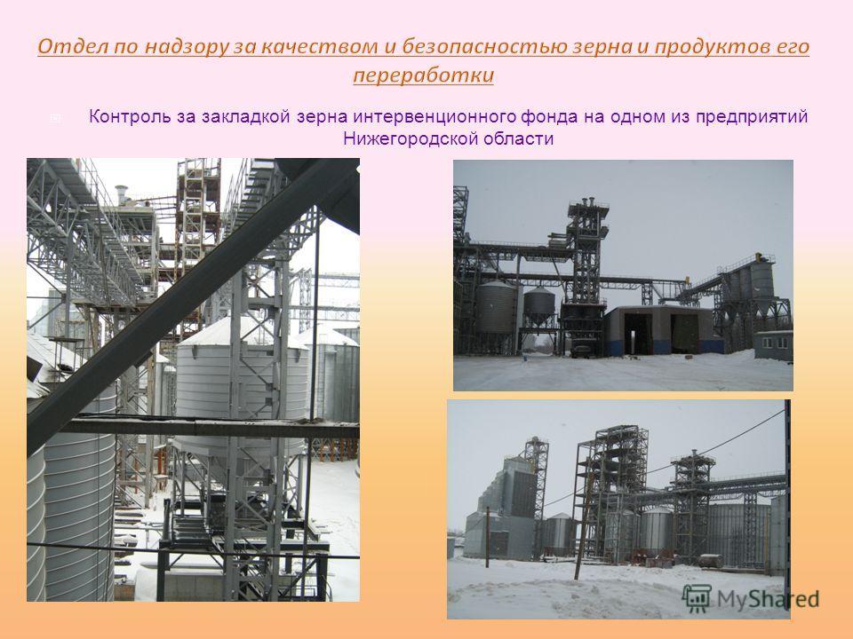 Контроль за закладкой зерна интервенционного фонда на одном из предприятий Нижегородской области