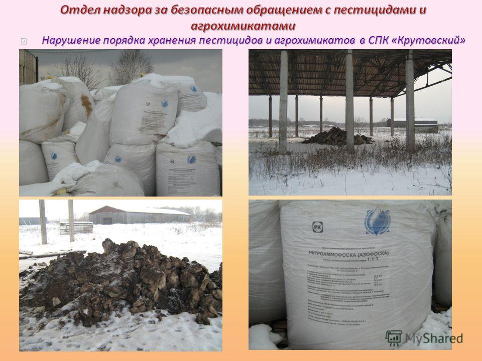 Нарушение порядка хранения пестицидов и агрохимикатов в СПК « Крутовский » Нарушение порядка хранения пестицидов и агрохимикатов в СПК « Крутовский »