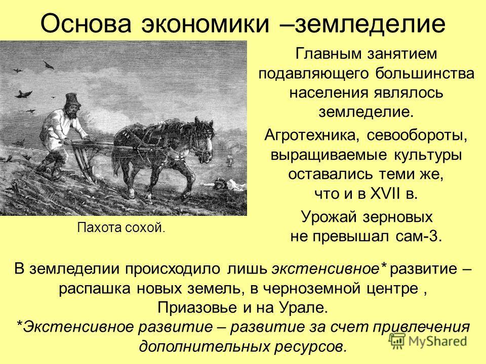 Основа экономики –земледелие Главным занятием подавляющего большинства населения являлось земледелие. Агротехника, севообороты, выращиваемые культуры оставались теми же, что и в XVII в. Урожай зерновых не превышал сам-3. Пахота сохой. В земледелии пр
